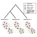 Multi-task Graph clustering