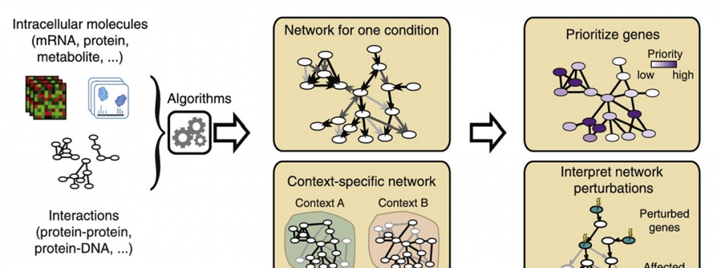 Network-based approaches for complex bio systems